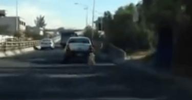 chien abandonné par sa maîtresse qui court derrière la voiture