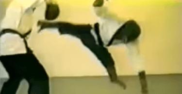 chimpanzé qui fait du kung-fu