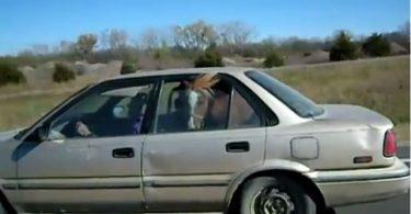poney partant en voyage en voiture
